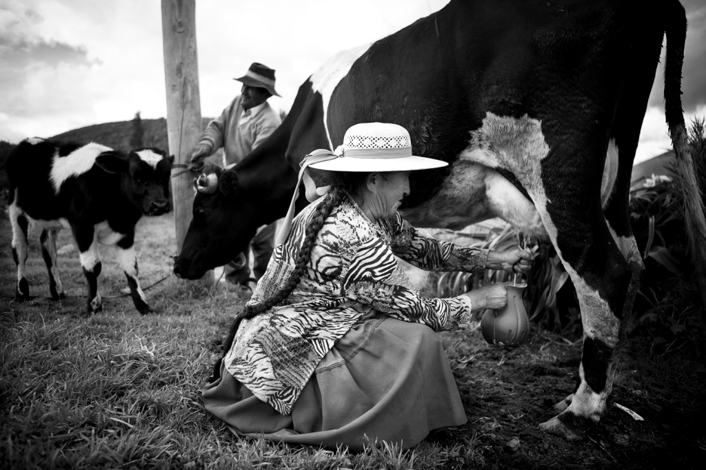 Bolivian woman in the field